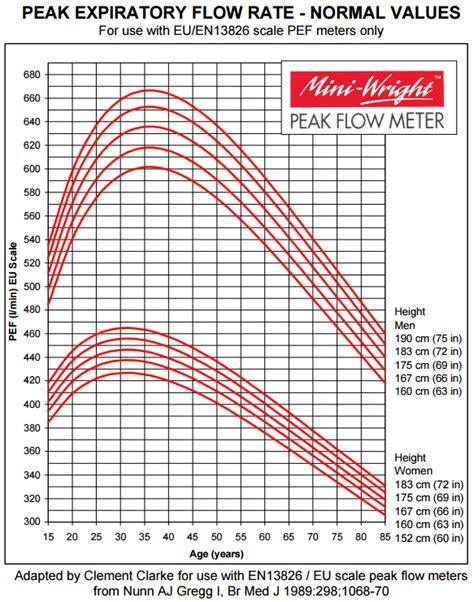 peak flow chart asthma peak flow diary peak flow meter readings patient