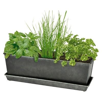indooroutdoor herb grow kit smith hawken herb