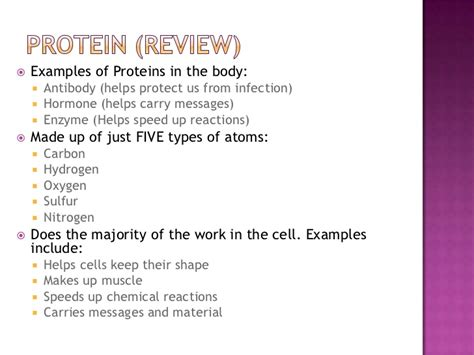 exle of protein proteins and nucleic acids
