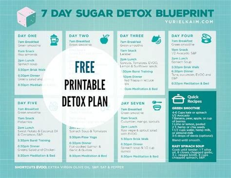 10 Day No Sugar Detox Diet by Sugar Detox Plan A 10 Step Blueprint For Quitting Sugar