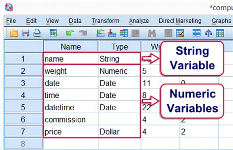 date format types php spss variable types and formats quick tutorial