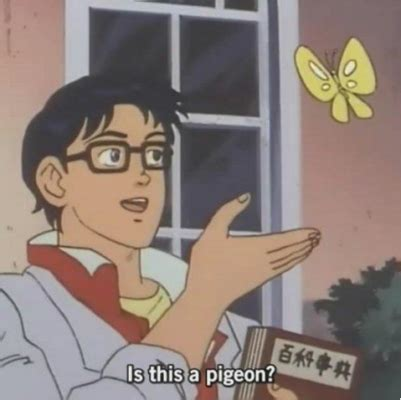 the best 'is this a pigeon?' butterfly meme remixes and edits