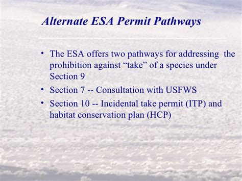 endangered species act section 9 permitting solar wind and geothermal projects on public