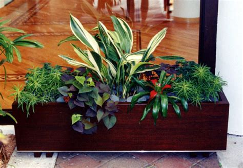 container gardening indoors indoor container gardening can make landscaping a four