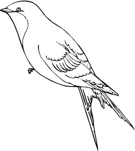 dibujo de golondrina para colorear dibujos de animales passaros desenhos para colorir