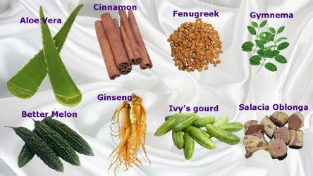 Diskon Teh Herbal Diabetes Diabetea Insuline herbal therapies for diabetes you might find this useful