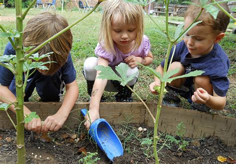 steps  creating   garden  kids