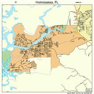 homosassa florida map 1232375