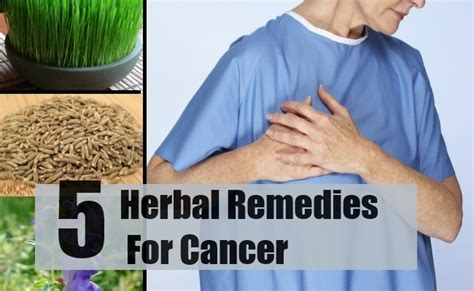 Herbal Cancer Fit 5 herbal remedies for cancer how to treat cancer with