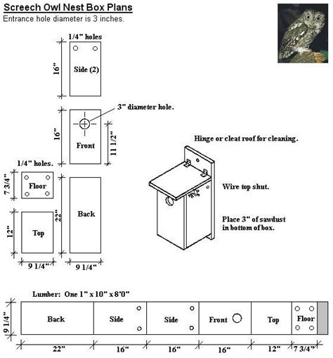 owl house plans car interior design