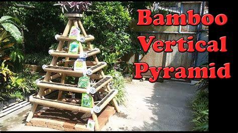 tis semai sawi vertikultur piramida bambucara buat
