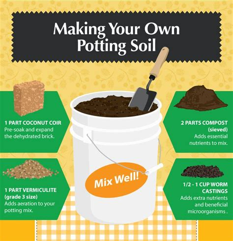 best potting mix for container gardening best 20 potting soil ideas on container