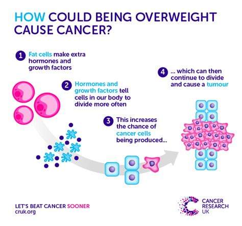 the second biggest preventable cause of cancer being