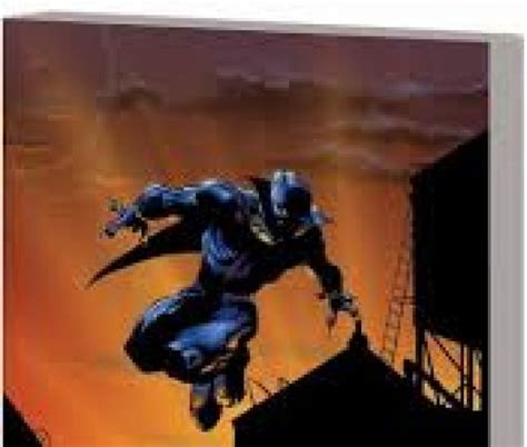 black panther by christopher black panther by christopher priest the complete collection trade paperback comic books