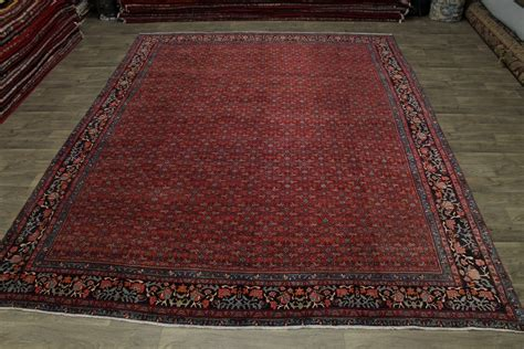 Best Deal On Area Rugs Wonderful Allover Antique Bidjar Rug Area Carpet Deal 11x14 Ebay
