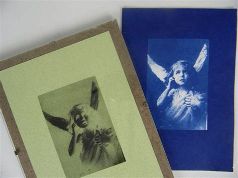 How To Make Cyanotype Paper - make a beautiful cyanotype picture to to for