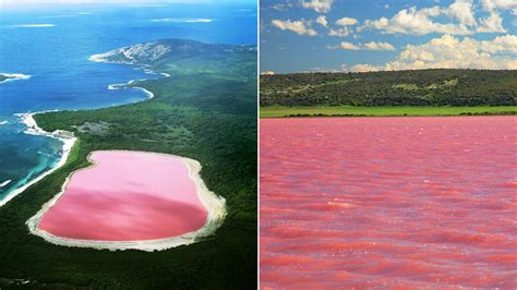 pink lake australia lake hillier the beautiful pink lake in western australia