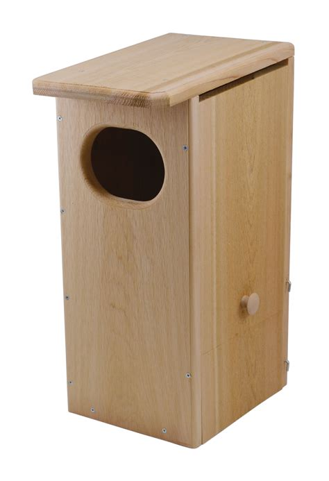 backyard chirper songbird essentials black bellied whistling duck house