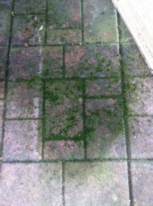 eco friendly patio cleaner diy eco friendly safe deck cleaner
