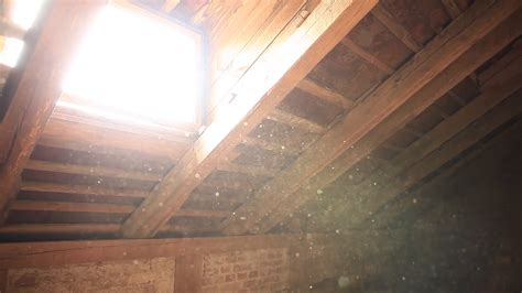 dust to lights dust in light pixshark com images galleries with a