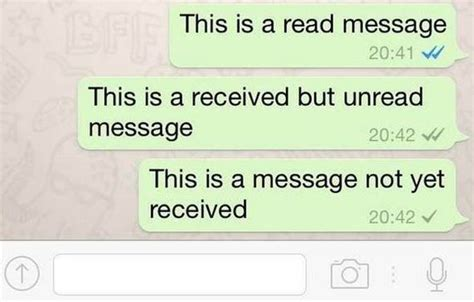 What Is Your Message by Whatsapp Introduce Blue Ticks To Let Users When