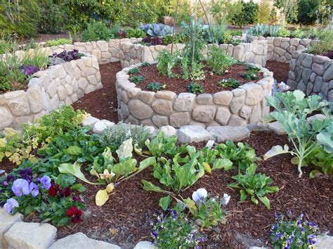 edible backyard plants 136 best edible garden design images on pinterest edible