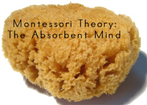 Absorbent Mind the absorbent mind is a montessori term