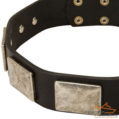 Handcrafted Leather Collars - handmade leather collar with plates