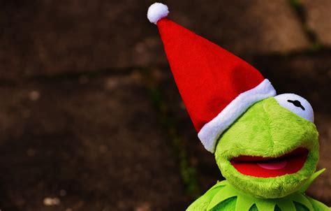 kermit frog christmas santa  photo  pixabay