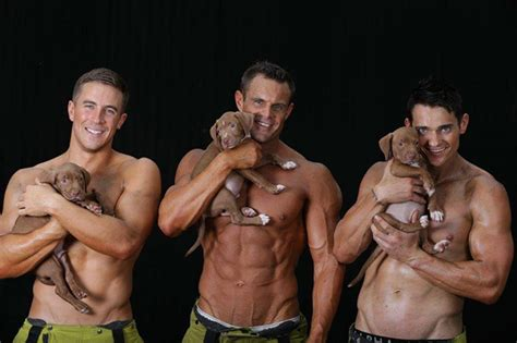 firemen with puppies firefighters posing with rescue puppies for charity will set your world on