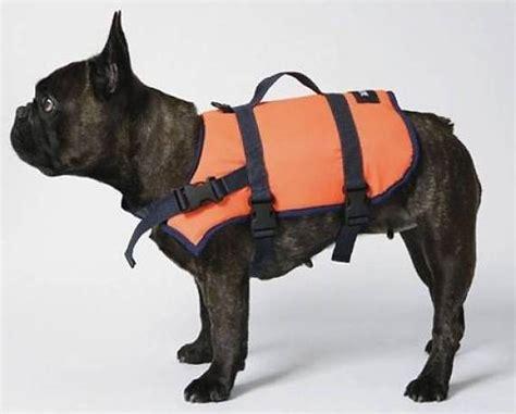 nobby zwemvest honden zwemvesten nodig alle prijzen van nederland die we