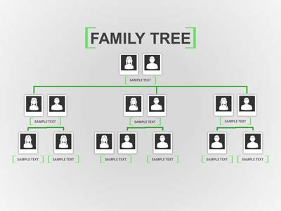 Family Tree In Powerpoint Kotametro Info Family Tree Template For Powerpoint