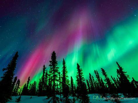 Borealis Alaska S Northern Lights Pictures