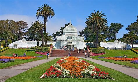 golden gate park flower garden 17 best images about california botanical gardens