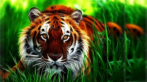 animal wallpaper hd desktop free download tiger 3d background wallpapers attachment 6505 amazing