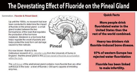 Fluoride Detox Symptoms Iodine by How To Detox Your Pineal Gland Effectively