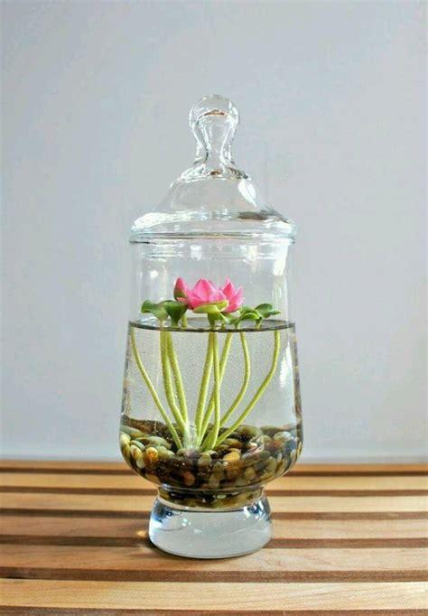 Handmade Terrariums - diy cactus terrariums