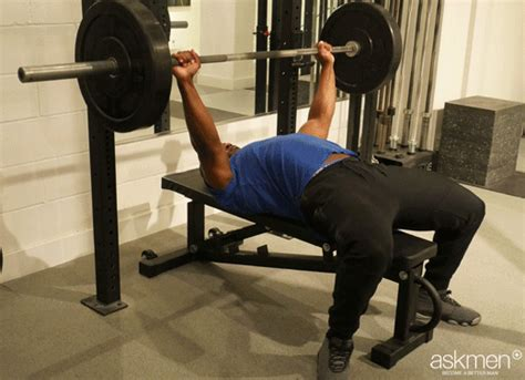 bigger bench press the guide to a bigger bench press the best choice for you