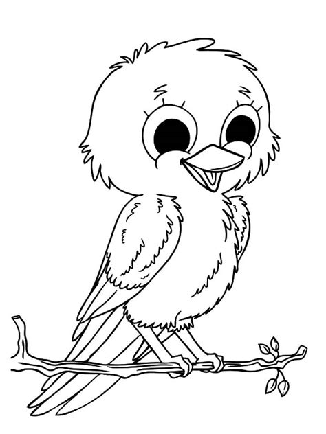 coloring pages canary bird canary bird pet coloring pages canary bird pet coloring