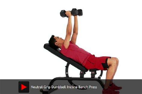 neutral grip dumbbell bench press how to do neutral grip dumbbell incline bench press