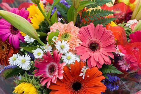 imagenes de flores del co las flores de guatemala son las preferidas por el mundo en