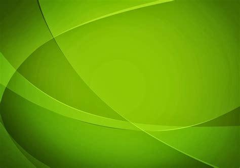 wallpaper daun mint background