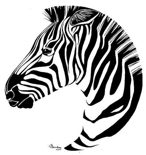 zebra head coloring page free zebra heads coloring pages