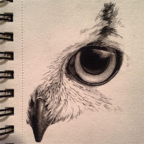 owl eyes tattoo 25 best ideas about owl drawings on owl