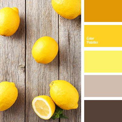 color  pumpkin color palette ideas