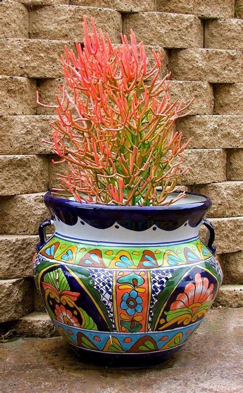 talavera pottery succulents talavera pottery plants