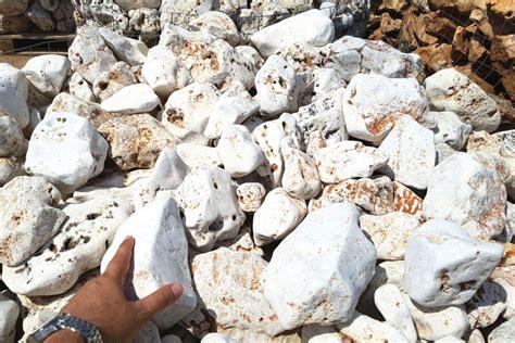 rocce da giardino rocce da giardino anticate della murgia michele cioffi