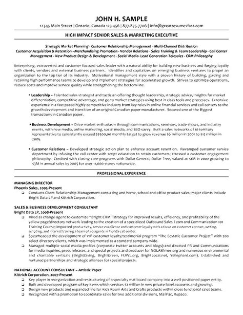Executive Director Resume by Executive Director Resume Sles Free Sles