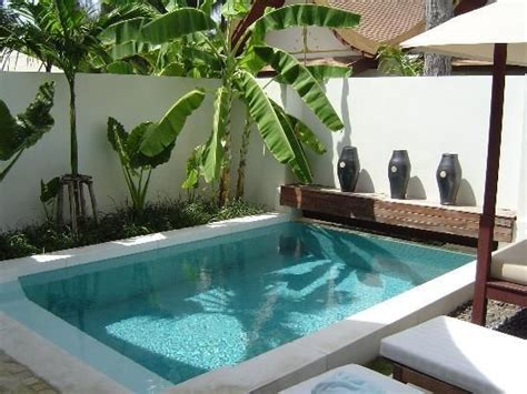 backyard plunge pool 33 best plunge pool images on pinterest mini pool ponds and small swimming pools