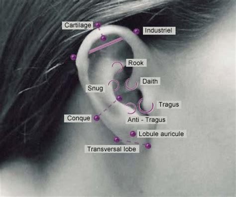 ear piercings types diagram ear piercing the best blogs